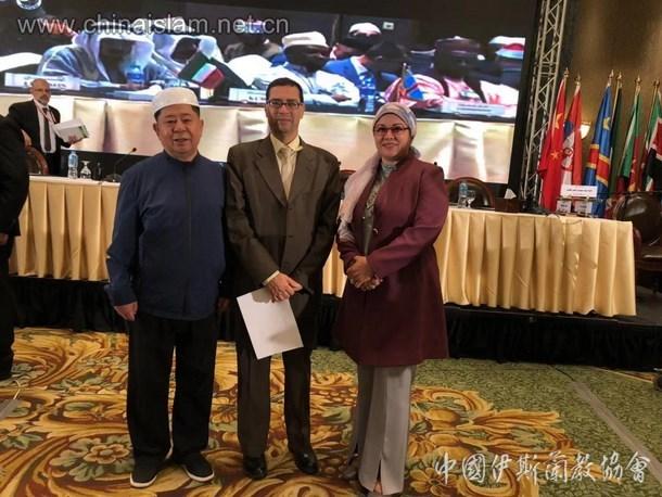 中国伊斯兰教协会代表团出席埃及伊斯兰事务最高理事会第三十届大会(图)