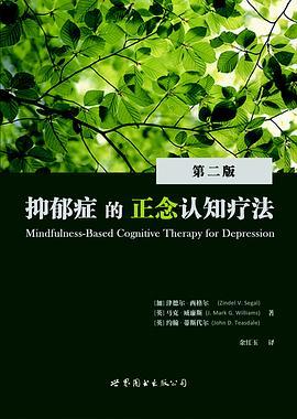《抑郁症的正念认知疗法》(图)