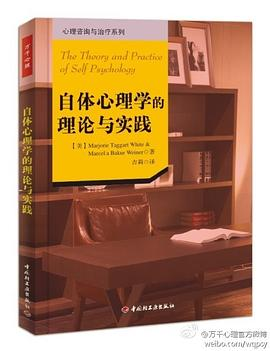 《自体心理学的理论与实践》(图)